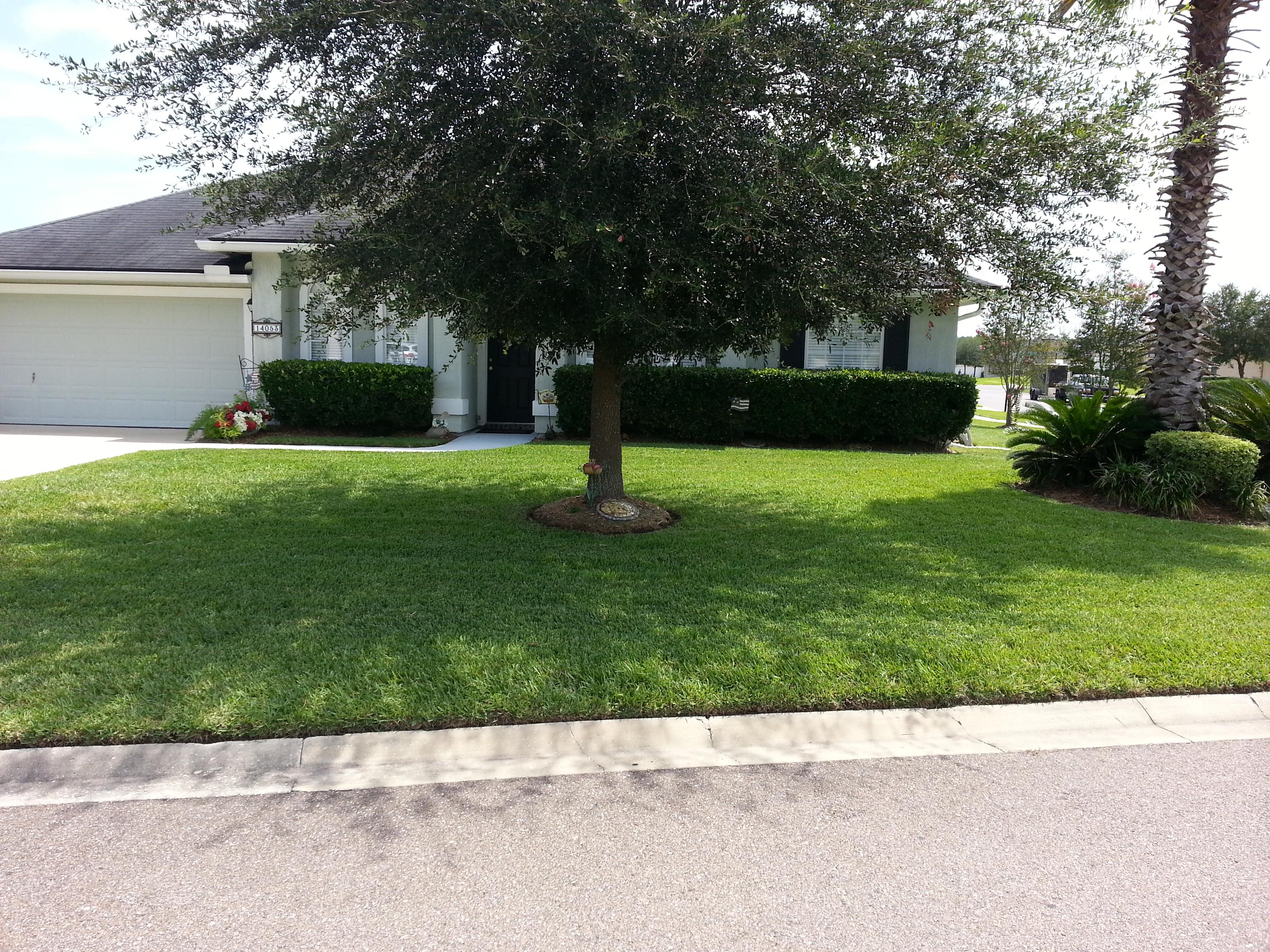Lawn maintenance jacksonville fl for Landscape maintenance